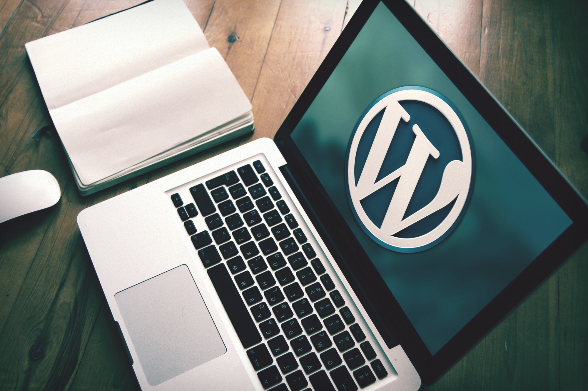 Все о CMS WordPress